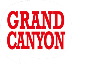 Logo Website Wie Organiseert De Goudse Haringparty